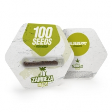 Blueberry Bulk Seeds