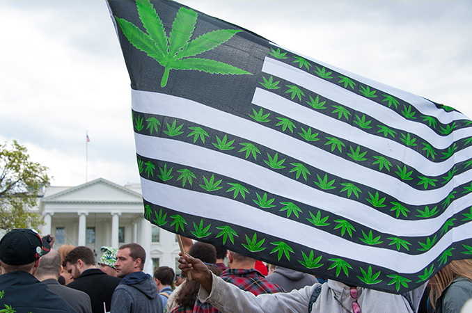 A Brief Overview Of NORML - And How It Has Shaped Cannabis Reform