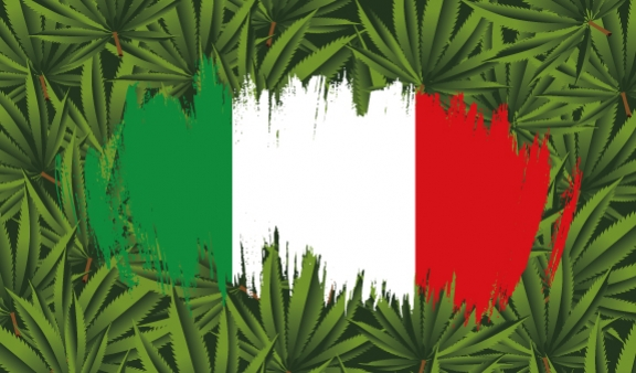 Top 5 Cannabis Strains to Grow in an Italian Climate