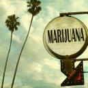 Top 5 Holiday Destinations For Getting High