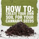 How to: Create Your Own Soil for Your Cannabis Seeds