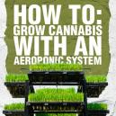 How to: Grow Cannabis With an Aeroponic System